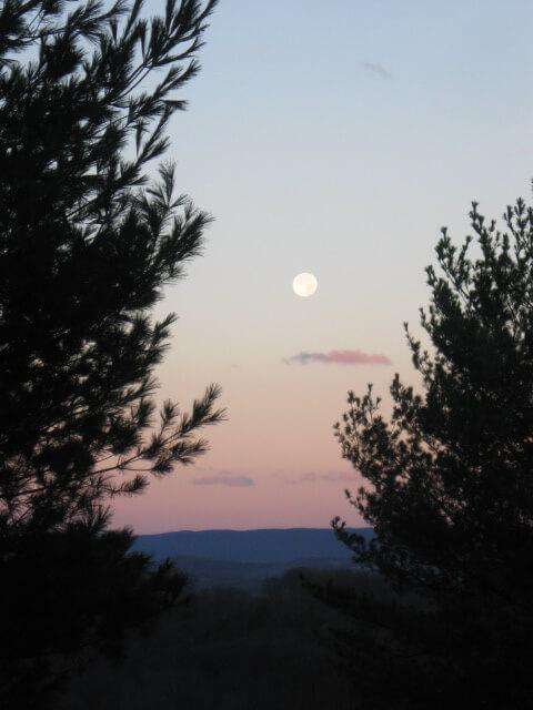 Moon.shot. 11.16.13
